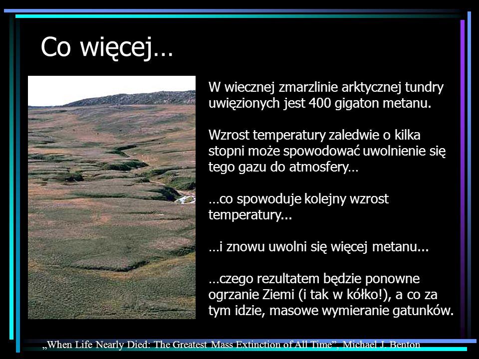 Co więcej… W wiecznej zmarzlinie arktycznej tundry uwięzionych jest 400 gigaton metanu.