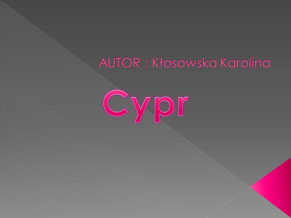 AUTOR : Kłosowska Karolina