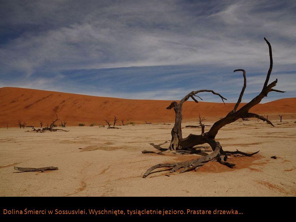 Dolina Śmierci w Sossusvlei. Wyschnięte, tysiącletnie jezioro