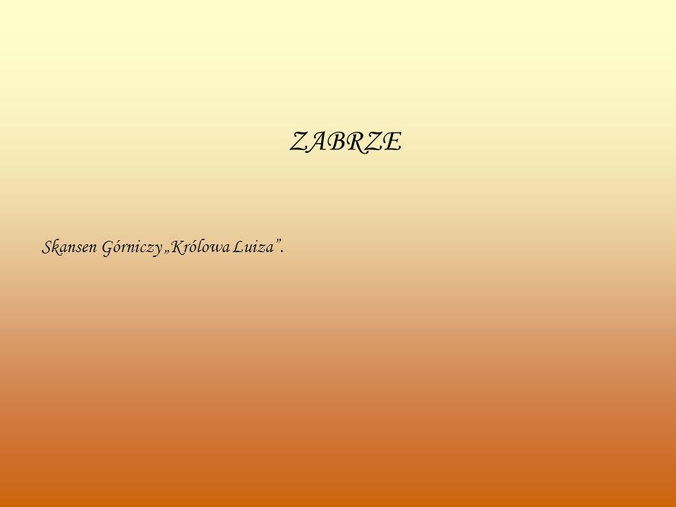 """ZABRZE Skansen Górniczy """"Królowa Luiza ."""