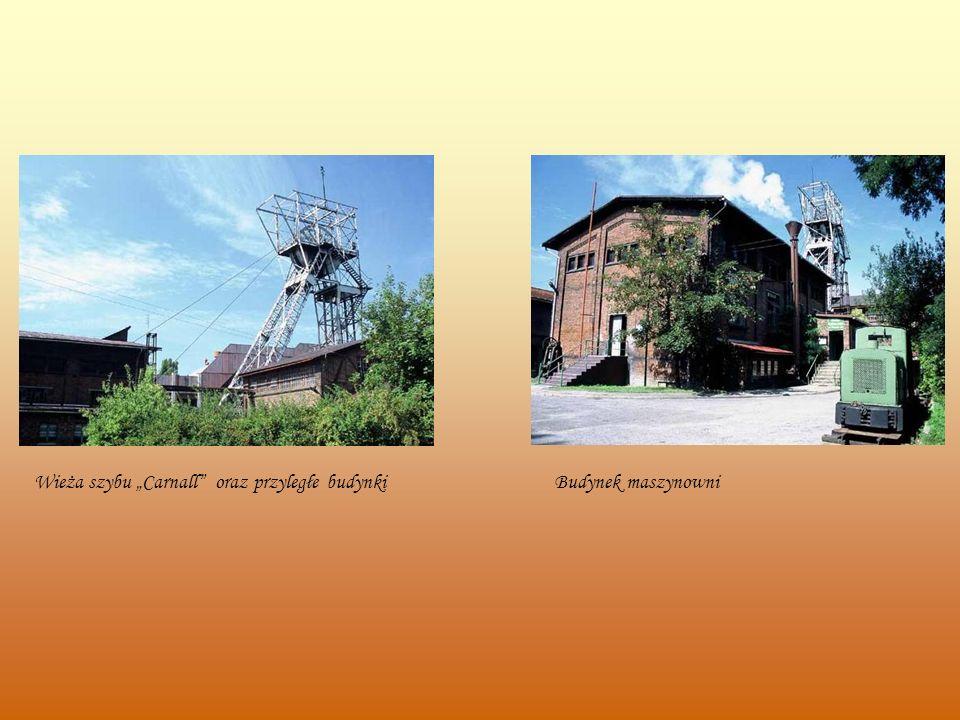 """Wieża szybu """"Carnall oraz przyległe budynki"""