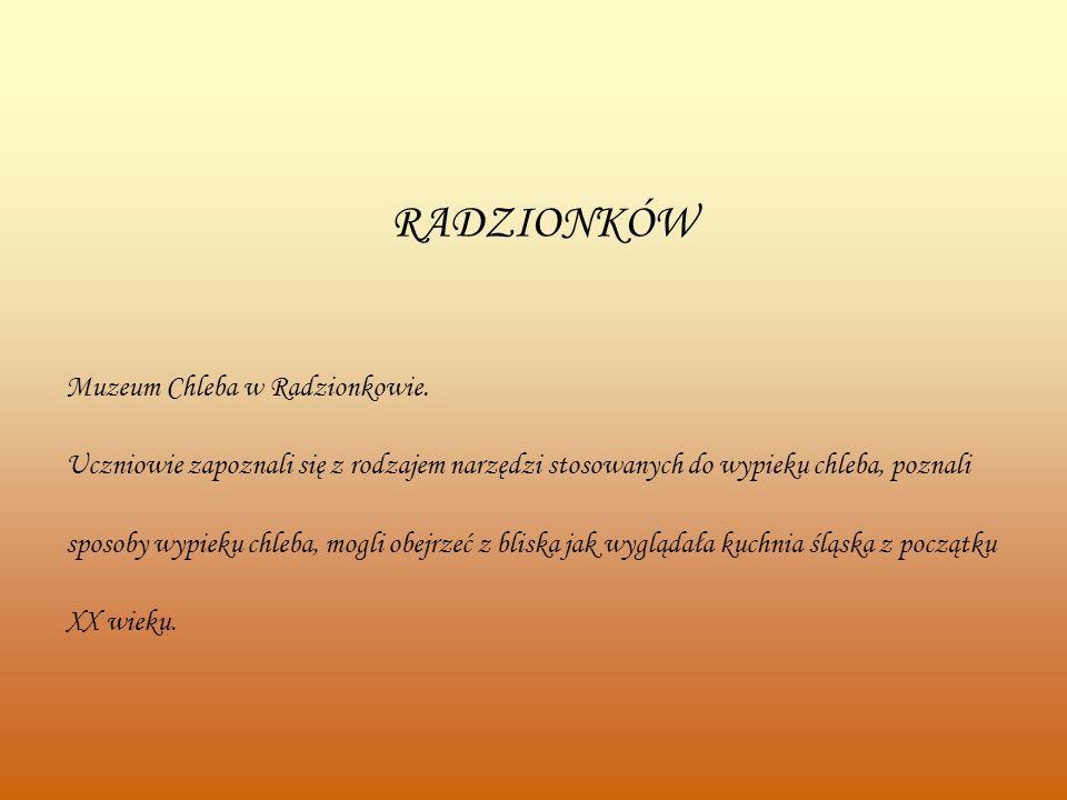 RADZIONKÓW Muzeum Chleba w Radzionkowie.