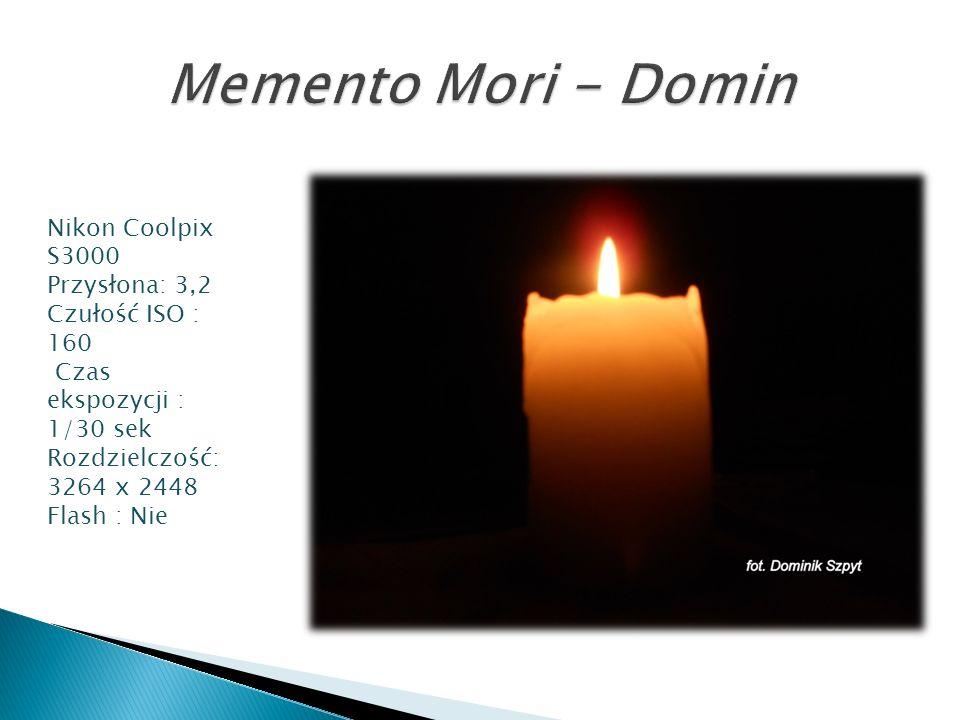 Memento Mori - Domin Nikon Coolpix S3000 Przysłona: 3,2
