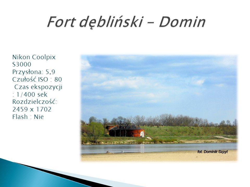 Fort dębliński - Domin Nikon Coolpix S3000 Przysłona: 5,9