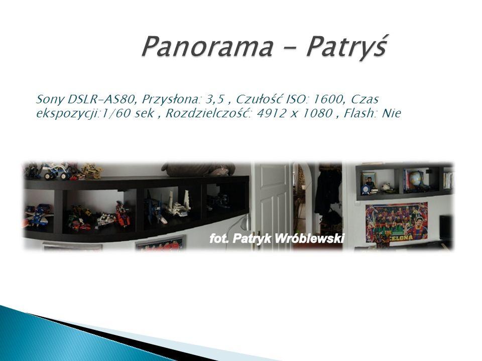 Panorama - PatryśSony DSLR-AS80, Przysłona: 3,5 , Czułość ISO: 1600, Czas ekspozycji:1/60 sek , Rozdzielczość: 4912 x 1080 , Flash: Nie.
