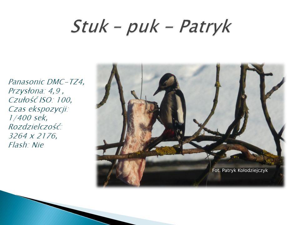 Stuk – puk - Patryk Panasonic DMC-TZ4, Przysłona: 4,9 ,