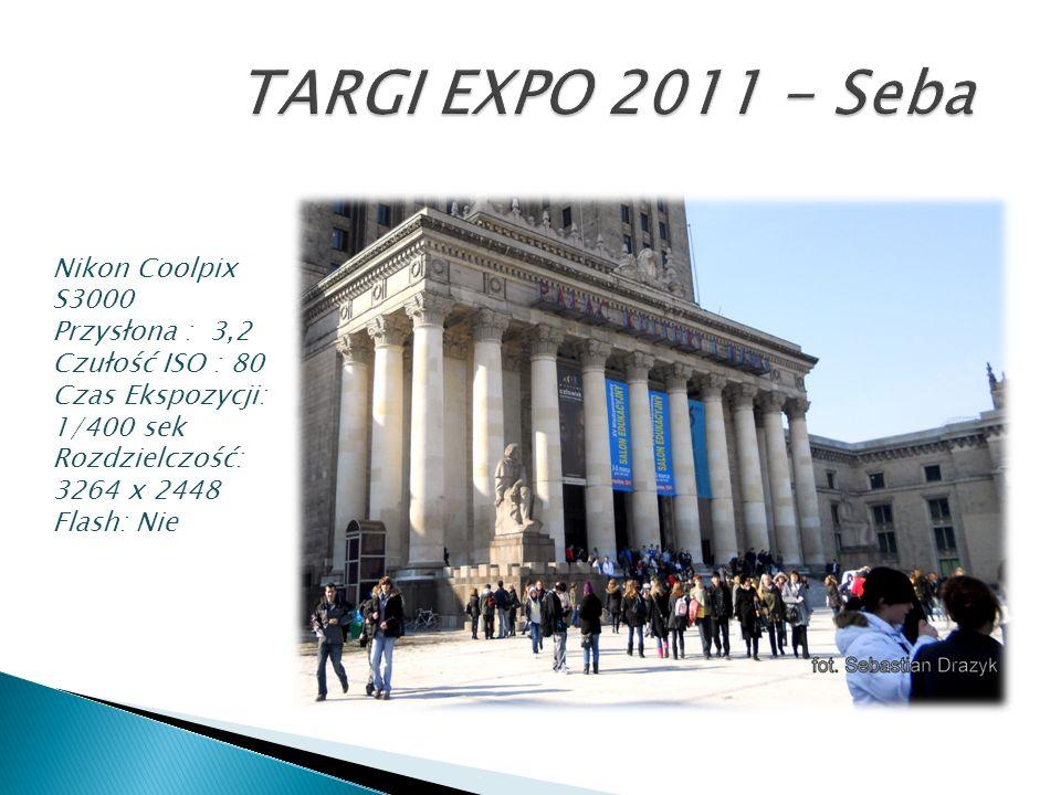 TARGI EXPO 2011 - Seba Nikon Coolpix S3000 Przysłona : 3,2 Czułość ISO : 80 Czas Ekspozycji: 1/400 sek.