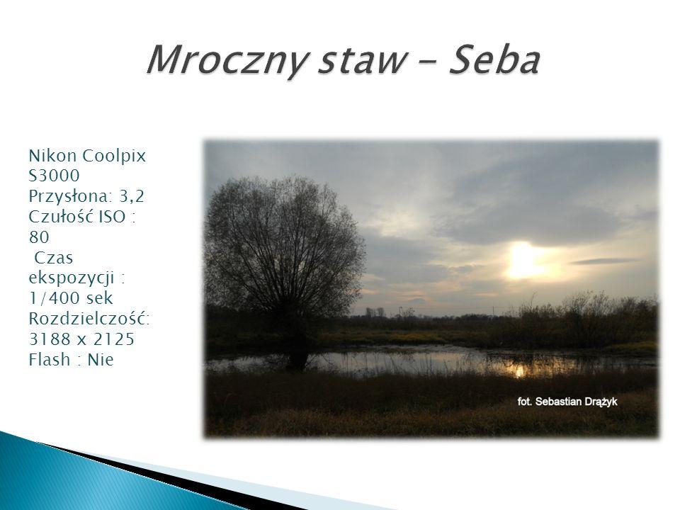 Mroczny staw - Seba Nikon Coolpix S3000 Przysłona: 3,2