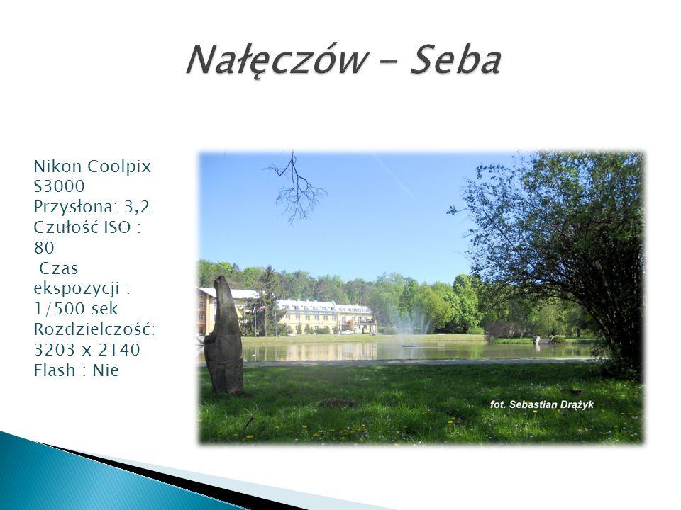 Nałęczów - Seba Nikon Coolpix S3000 Przysłona: 3,2 Czułość ISO : 80
