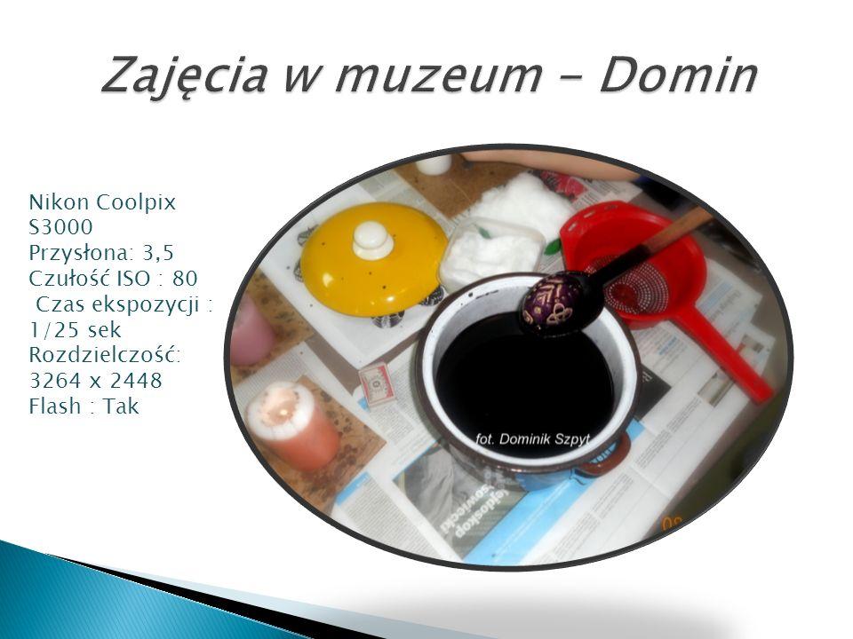 Zajęcia w muzeum - Domin