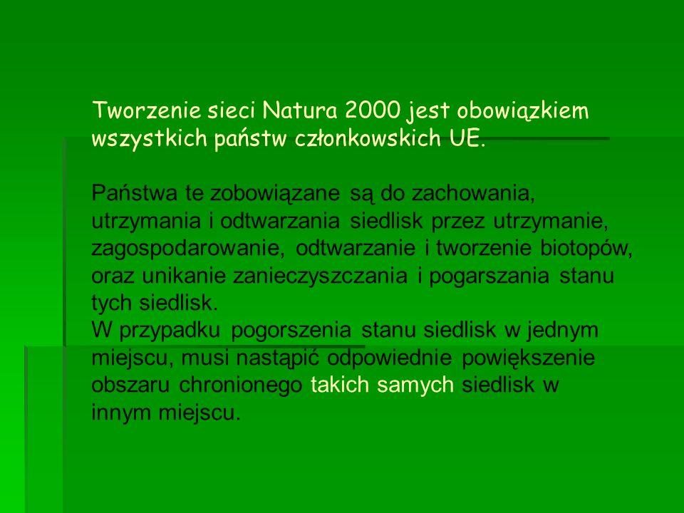 Tworzenie sieci Natura 2000 jest obowiązkiem