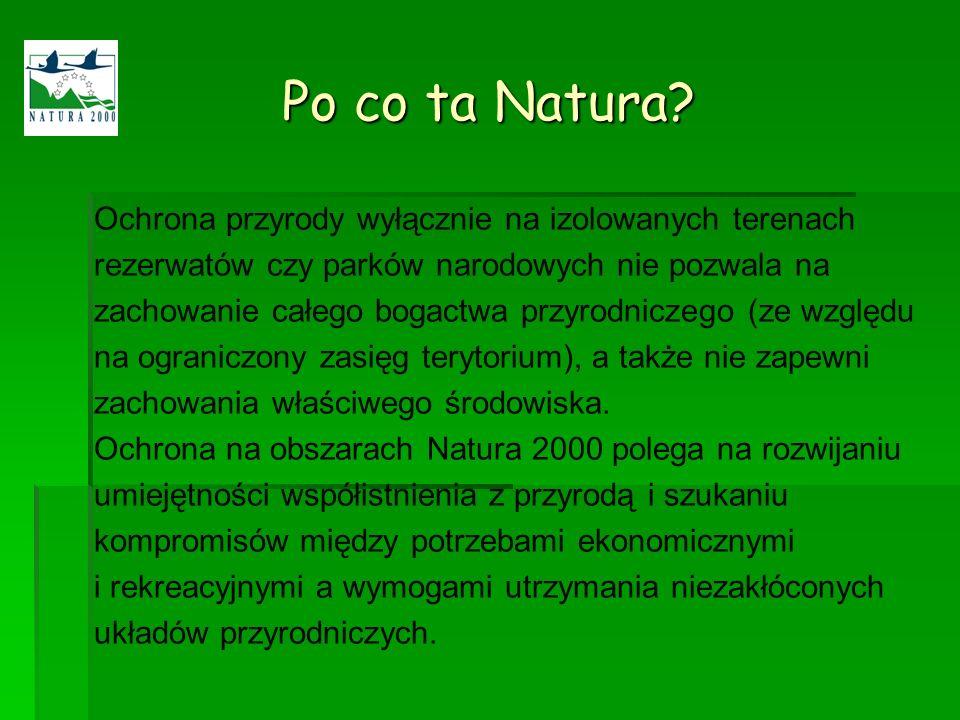 Po co ta Natura Ochrona przyrody wyłącznie na izolowanych terenach