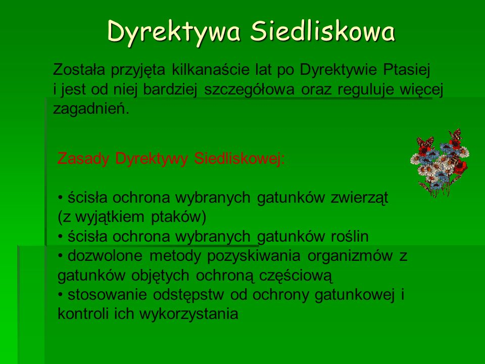 Dyrektywa Siedliskowa