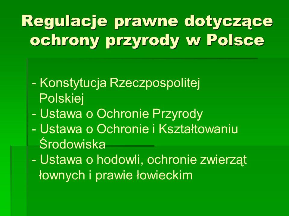 Regulacje prawne dotyczące ochrony przyrody w Polsce