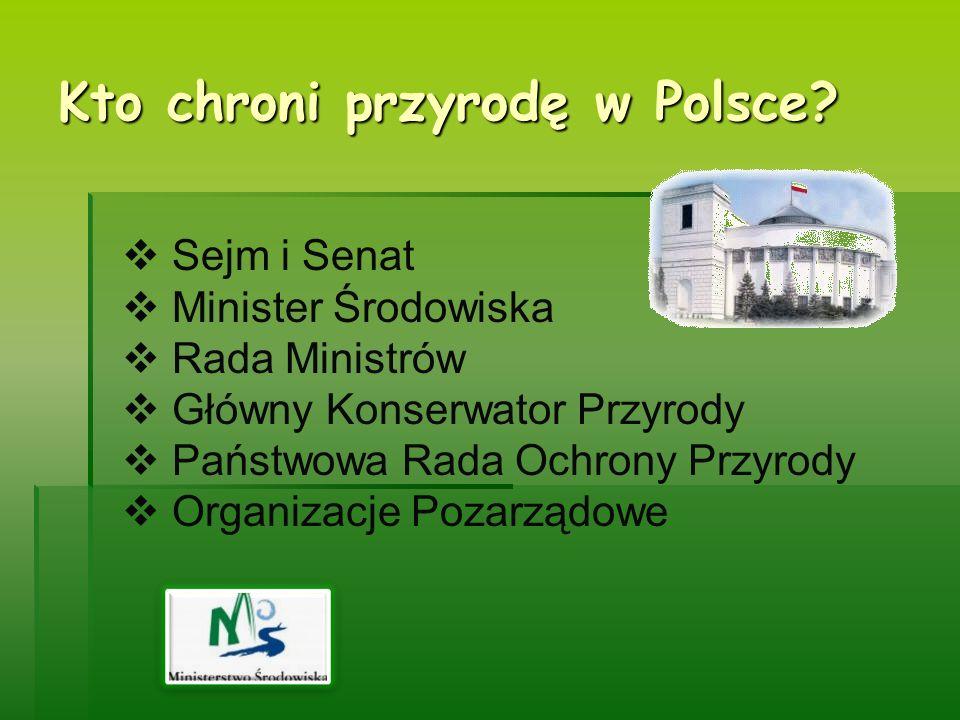Kto chroni przyrodę w Polsce