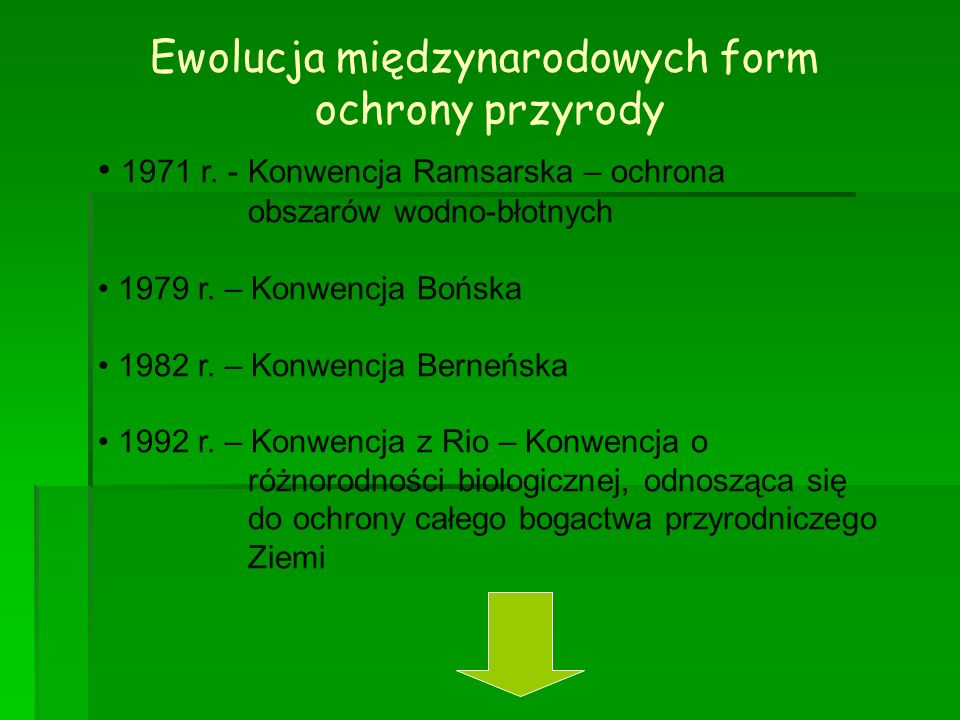 Ewolucja międzynarodowych form