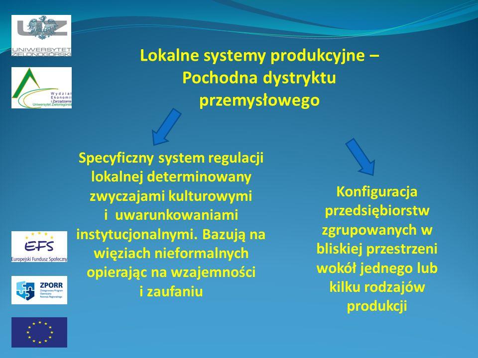 Lokalne systemy produkcyjne – Pochodna dystryktu przemysłowego
