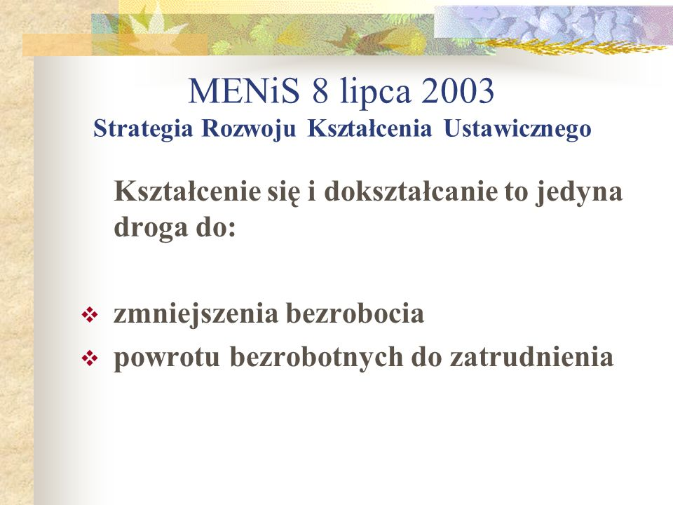 MENiS 8 lipca 2003 Strategia Rozwoju Kształcenia Ustawicznego