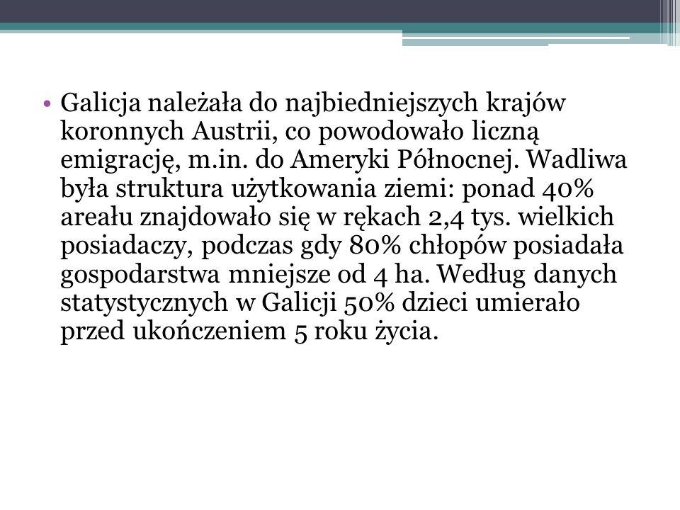 Galicja należała do najbiedniejszych krajów koronnych Austrii, co powodowało liczną emigrację, m.in. do Ameryki Północnej. Wadliwa była struktura użytkowania ziemi: ponad 40% areału znajdowało się w rękach 2,4 tys. wielkich posiadaczy, podczas gdy 80% chłopów posiadała gospodarstwa mniejsze od 4 ha. Według danych statystycznych w Galicji 50% dzieci umierało przed ukończeniem 5 roku życia.