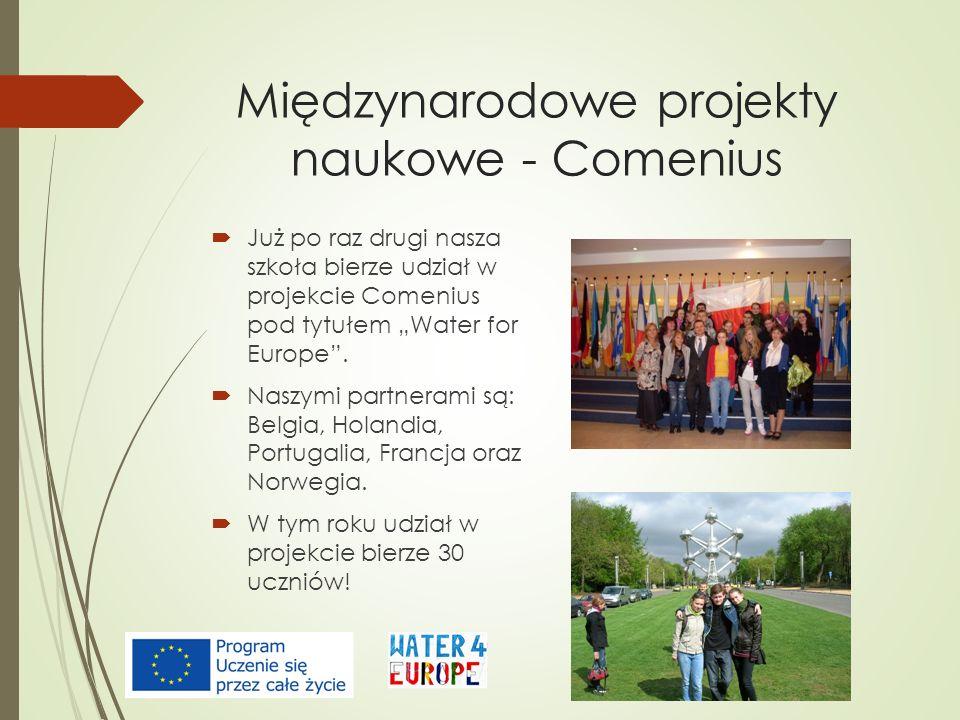 Międzynarodowe projekty naukowe - Comenius