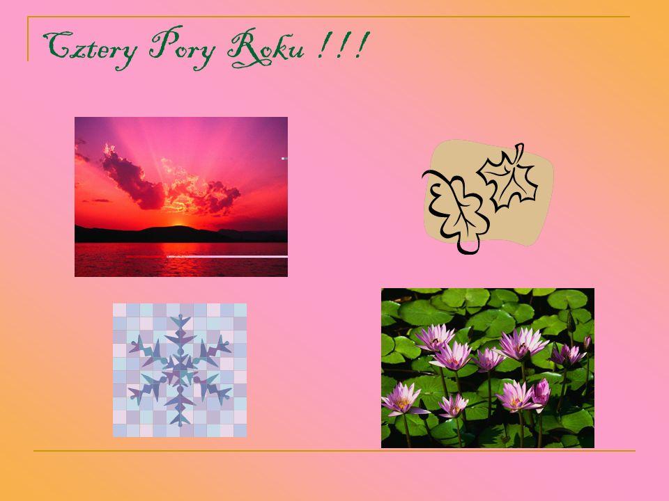 Cztery Pory Roku ! ! !