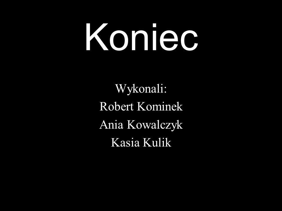 Koniec Wykonali: Robert Kominek Ania Kowalczyk Kasia Kulik