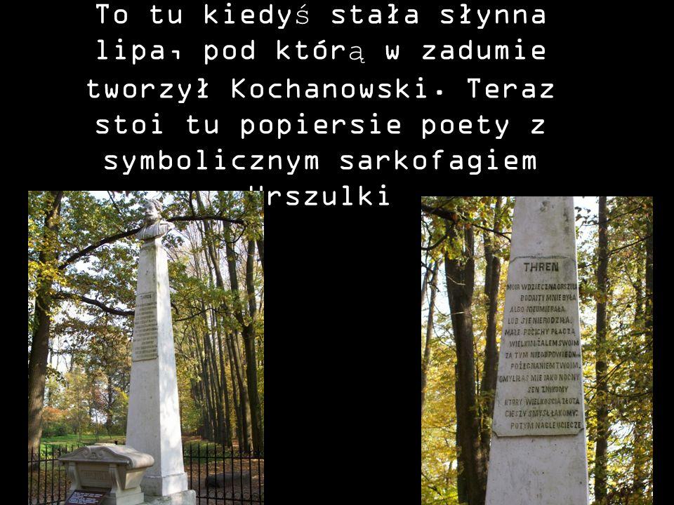 To tu kiedyś stała słynna lipa, pod którą w zadumie tworzył Kochanowski.