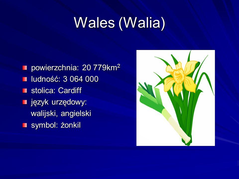 Wales (Walia) powierzchnia: 20 779km2 ludność: 3 064 000