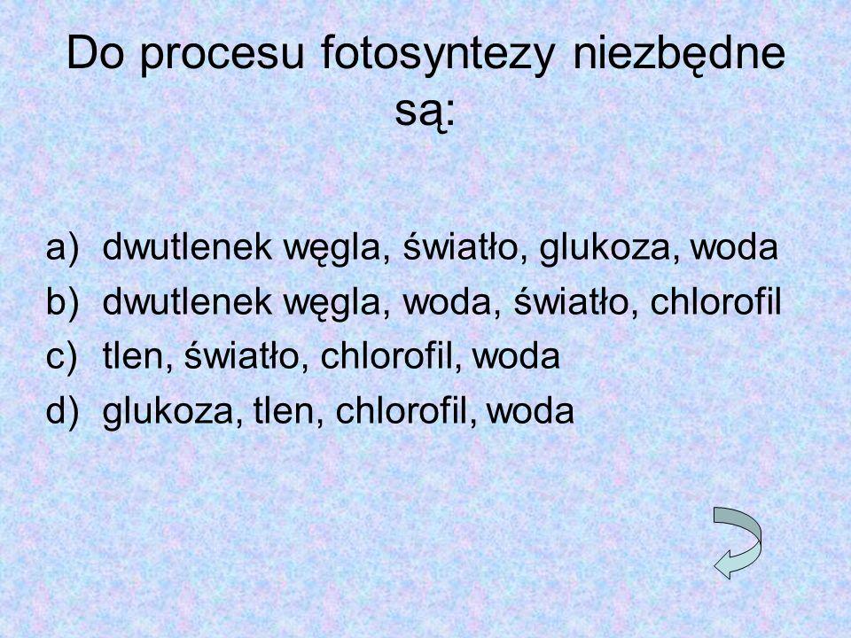 Do procesu fotosyntezy niezbędne są: