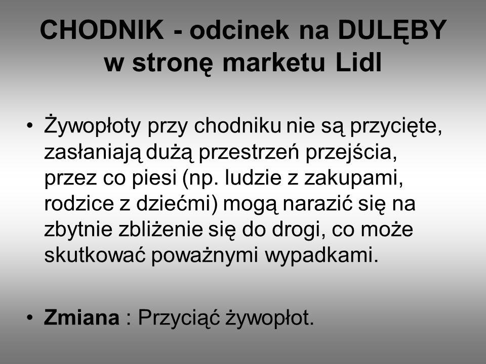 CHODNIK - odcinek na DULĘBY w stronę marketu Lidl