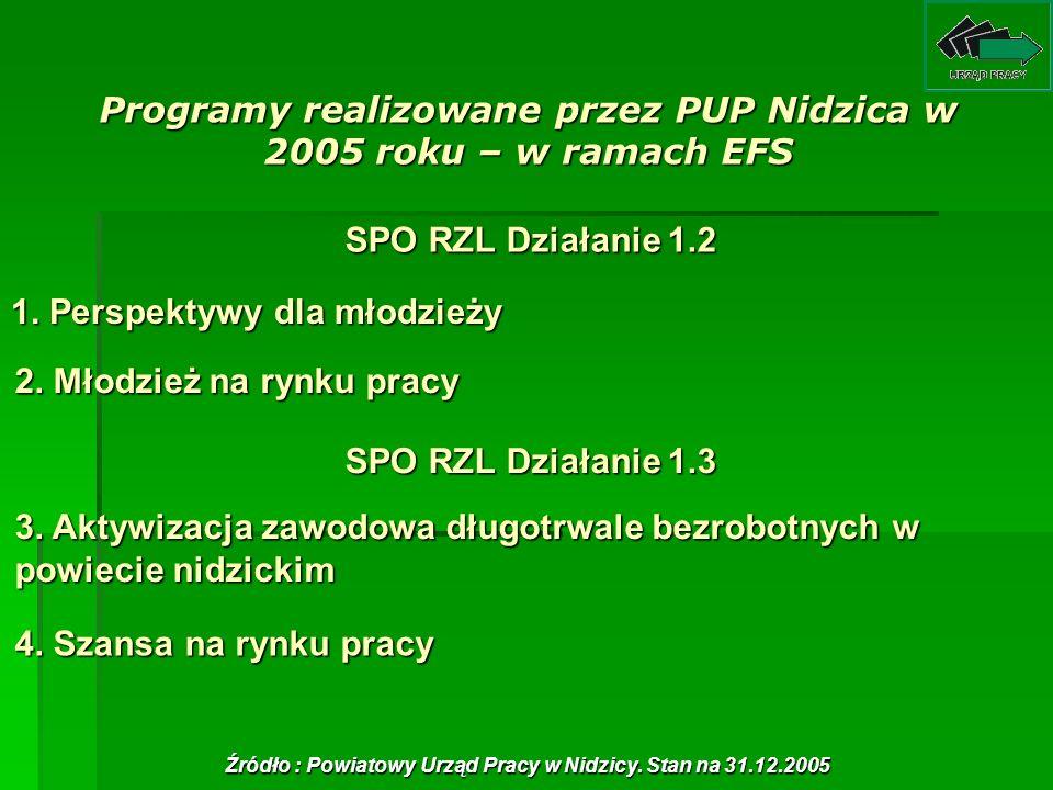 Programy realizowane przez PUP Nidzica w 2005 roku – w ramach EFS