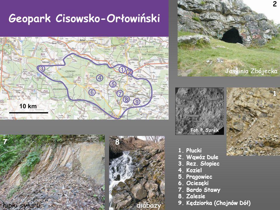 Geopark Cisowsko-Orłowiński