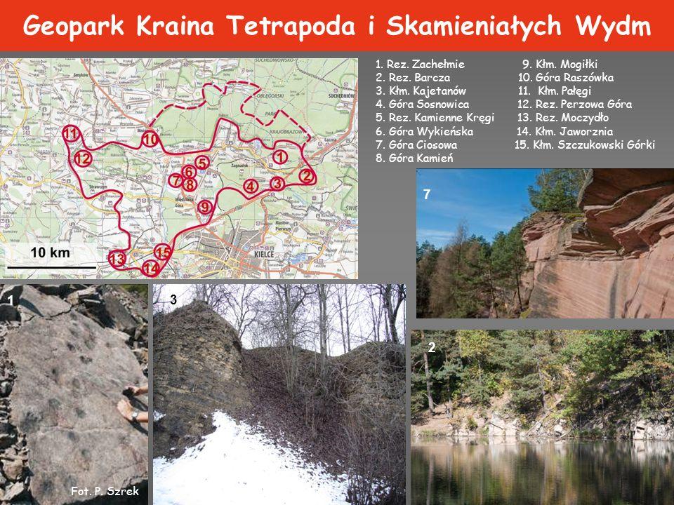 Geopark Kraina Tetrapoda i Skamieniałych Wydm