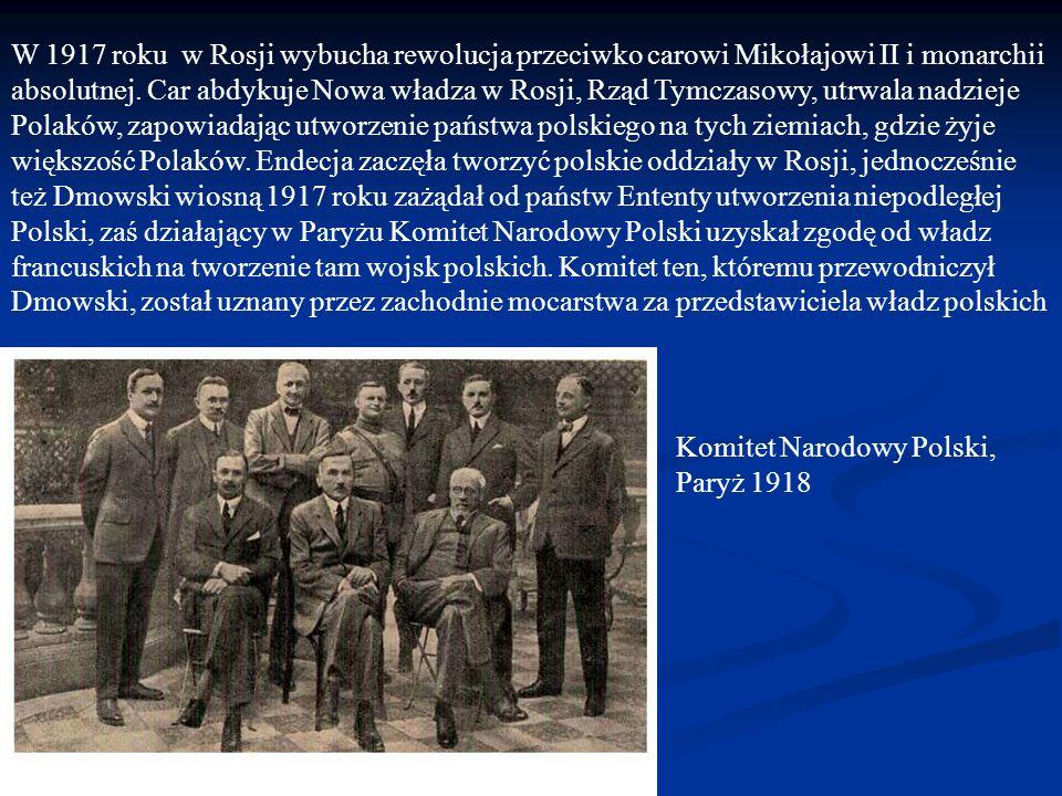 W 1917 roku w Rosji wybucha rewolucja przeciwko carowi Mikołajowi II i monarchii absolutnej. Car abdykuje Nowa władza w Rosji, Rząd Tymczasowy, utrwala nadzieje Polaków, zapowiadając utworzenie państwa polskiego na tych ziemiach, gdzie żyje większość Polaków. Endecja zaczęła tworzyć polskie oddziały w Rosji, jednocześnie też Dmowski wiosną 1917 roku zażądał od państw Ententy utworzenia niepodległej Polski, zaś działający w Paryżu Komitet Narodowy Polski uzyskał zgodę od władz francuskich na tworzenie tam wojsk polskich. Komitet ten, któremu przewodniczył Dmowski, został uznany przez zachodnie mocarstwa za przedstawiciela władz polskich