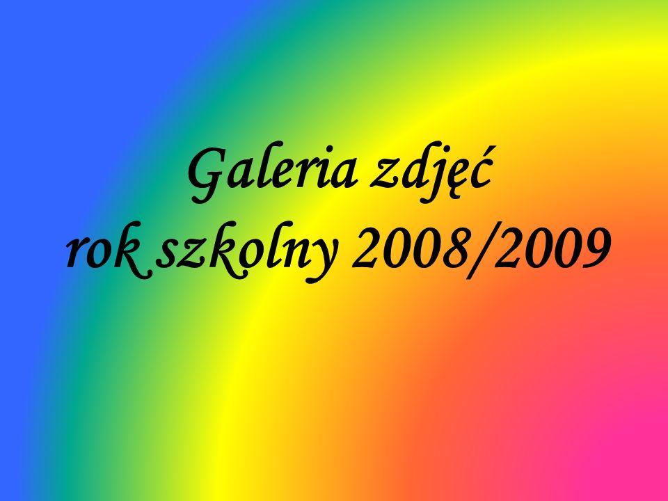 Galeria zdjęć rok szkolny 2008/2009