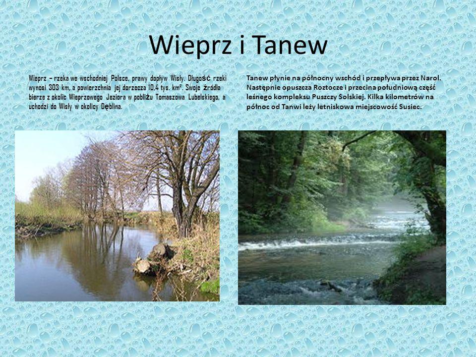 Wieprz i Tanew
