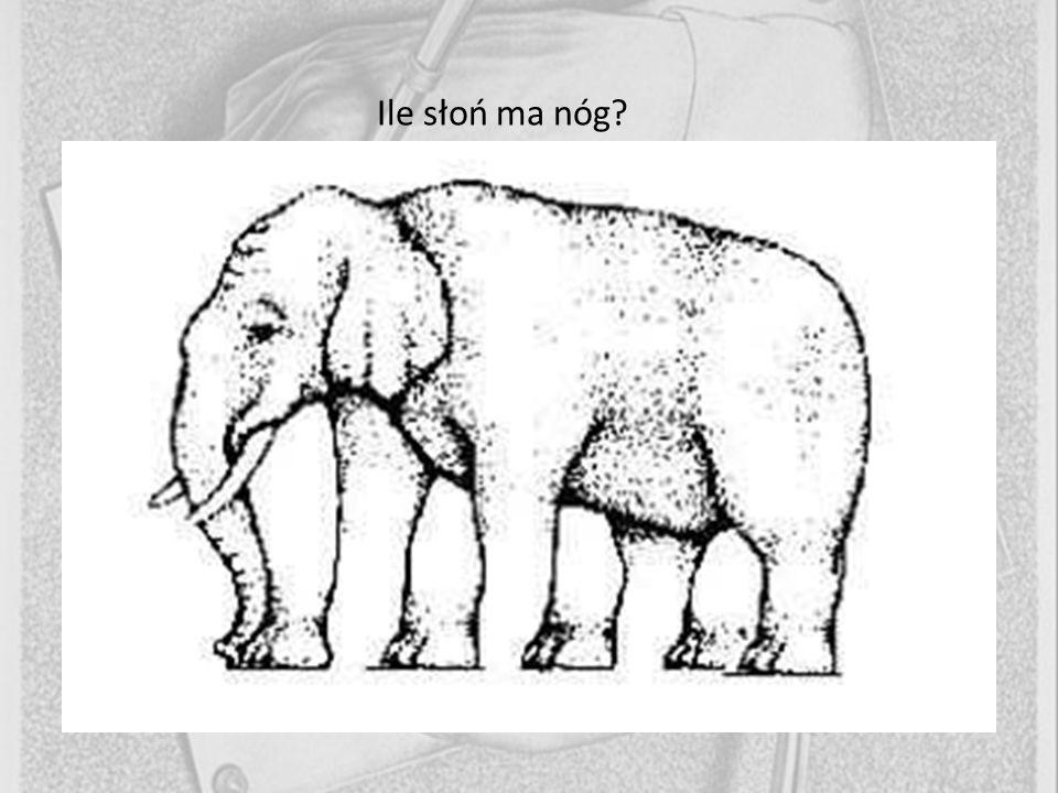 Ile słoń ma nóg 1