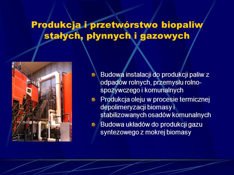 Produkcja i przetwórstwo biopaliw stałych, płynnych i gazowych