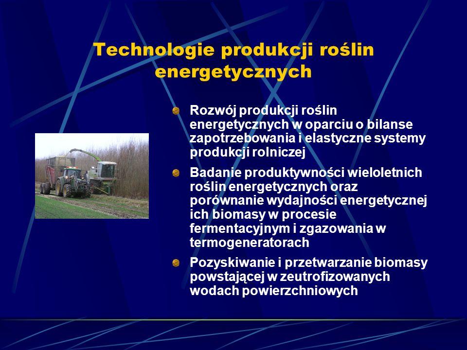 Technologie produkcji roślin energetycznych