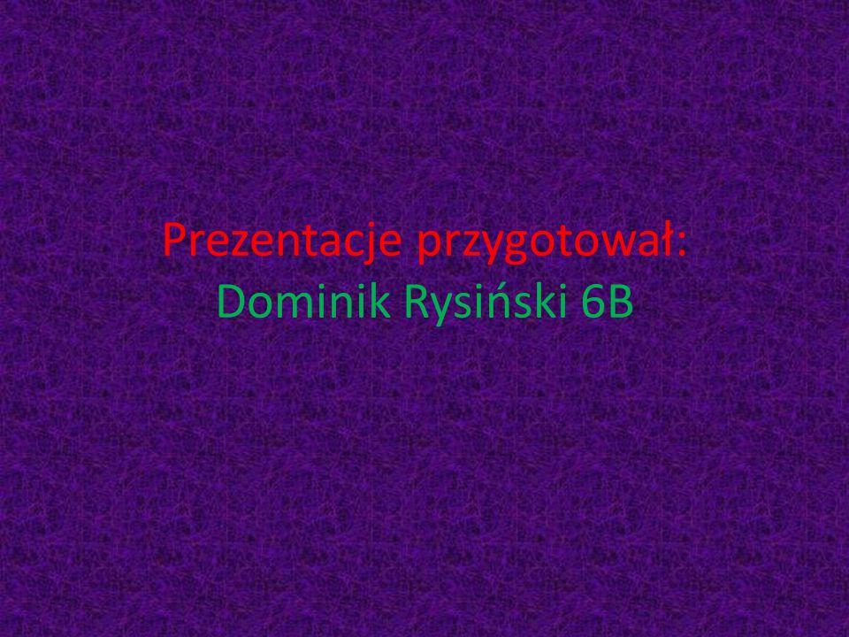 Prezentacje przygotował: Dominik Rysiński 6B