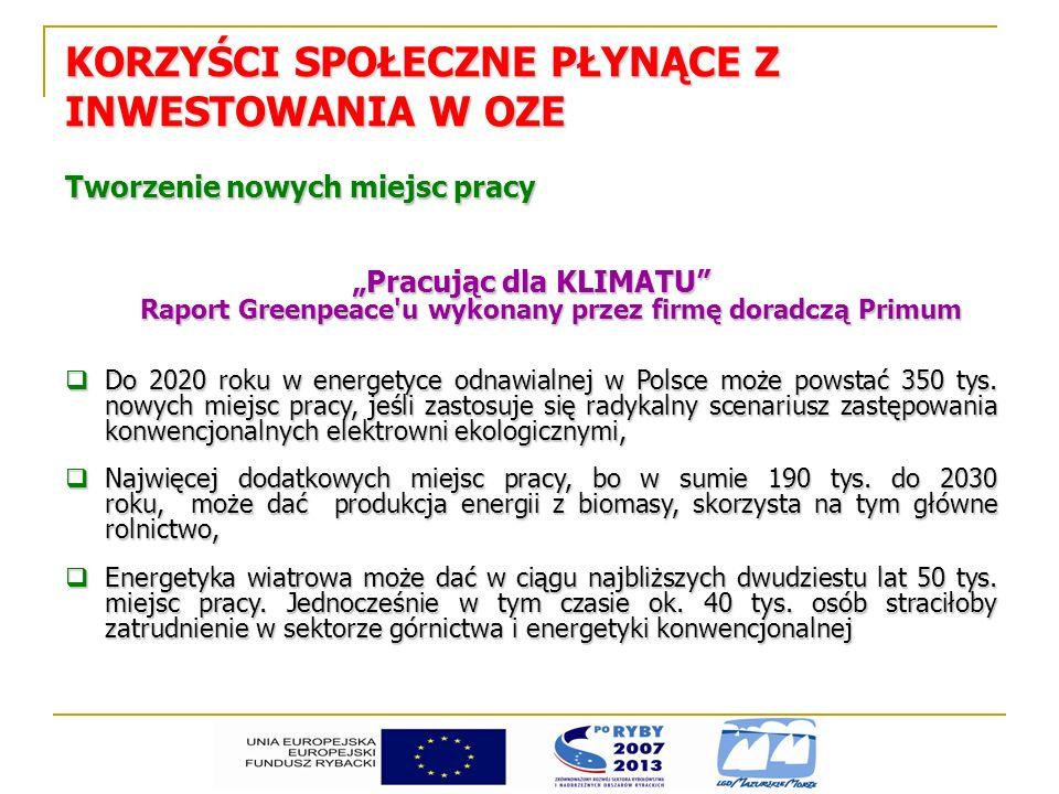 Raport Greenpeace u wykonany przez firmę doradczą Primum