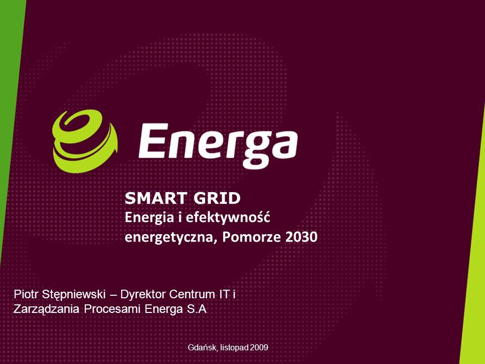 SMART GRID Energia i efektywność energetyczna, Pomorze 2030