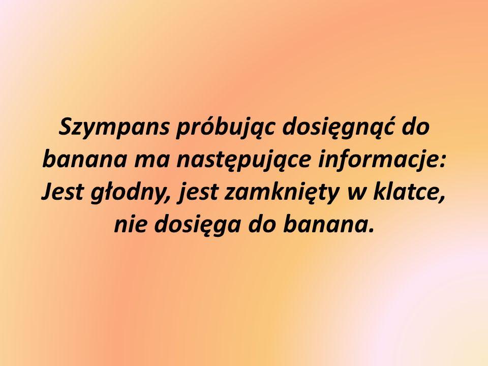 Szympans próbując dosięgnąć do banana ma następujące informacje: Jest głodny, jest zamknięty w klatce, nie dosięga do banana.