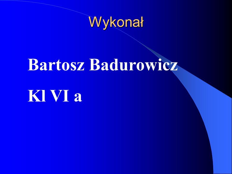 Wykonał Bartosz Badurowicz Kl VI a