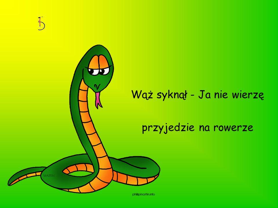 Wąż syknął - Ja nie wierzę