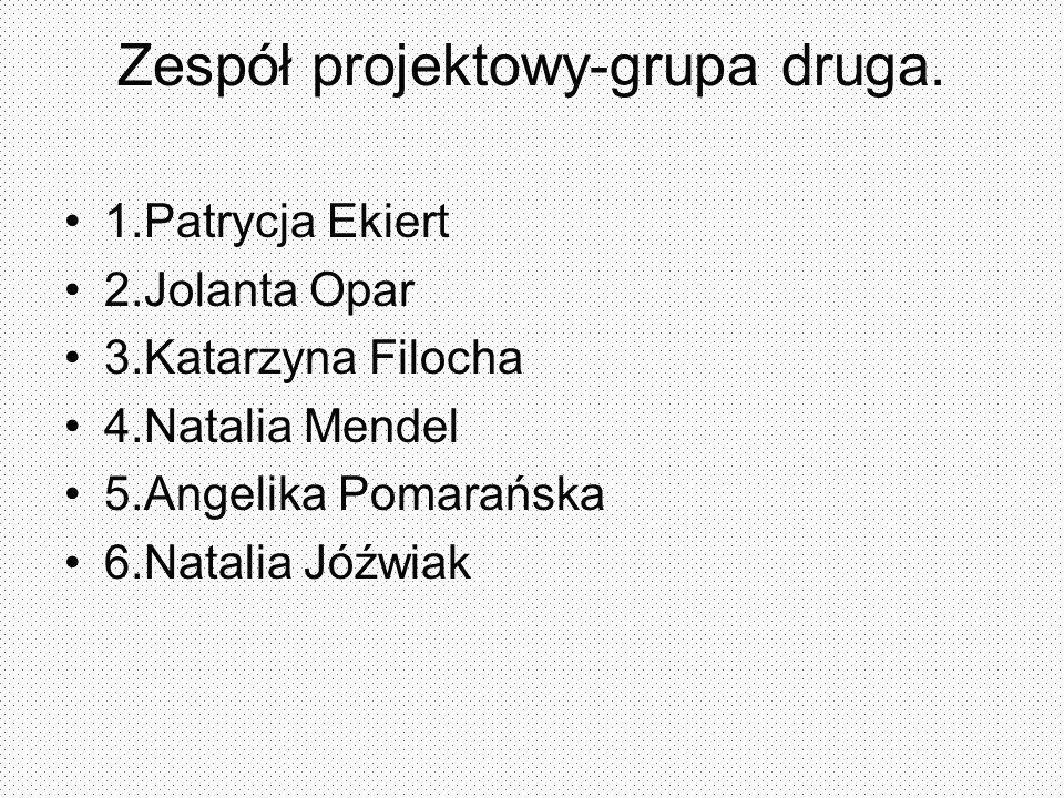 Zespół projektowy-grupa druga.