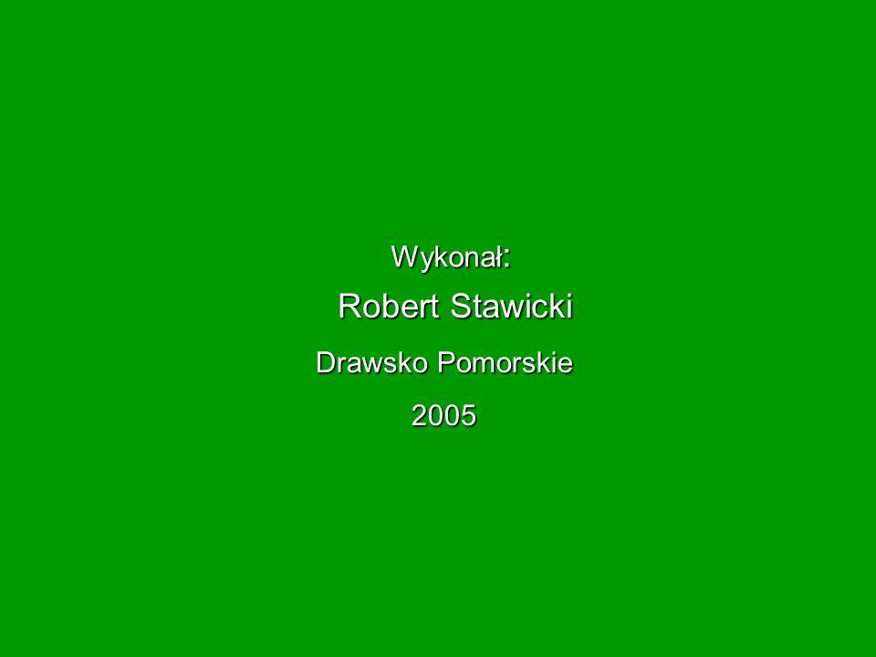 Wykonał: Robert Stawicki Drawsko Pomorskie 2005