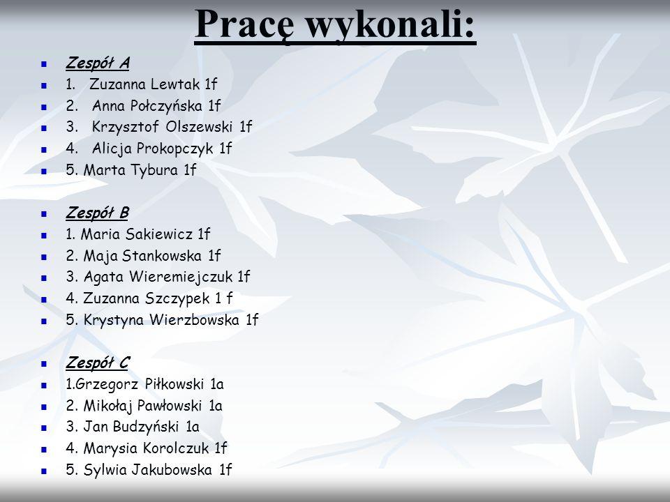 Pracę wykonali: Zespół A 1. Zuzanna Lewtak 1f 2. Anna Połczyńska 1f