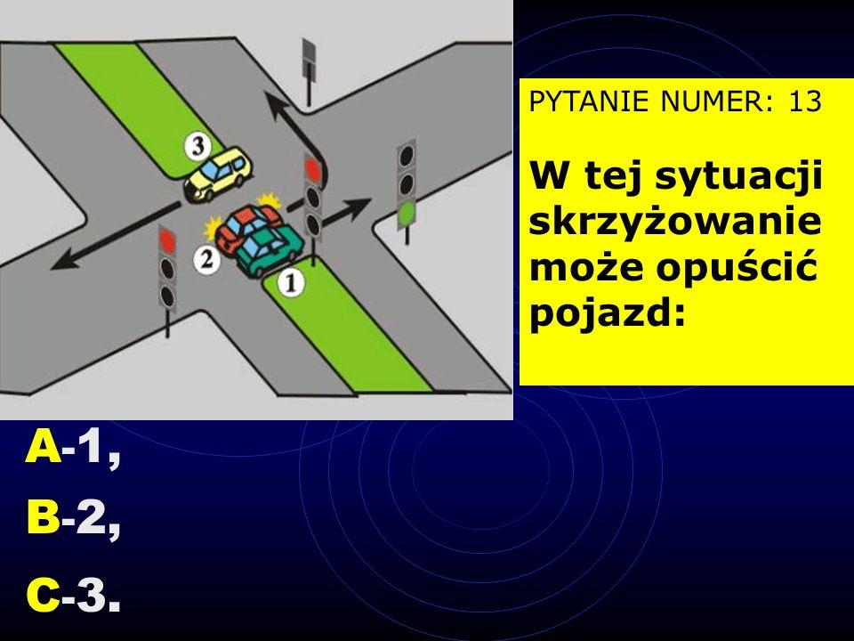 PYTANIE NUMER: 13 W tej sytuacji skrzyżowanie może opuścić pojazd: