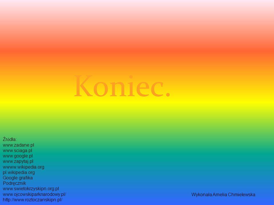 Koniec. Źródła: www.zadane.pl www.sciaga.pl www.google.pl